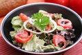 Free Fresh Salad Stock Image - 18179371