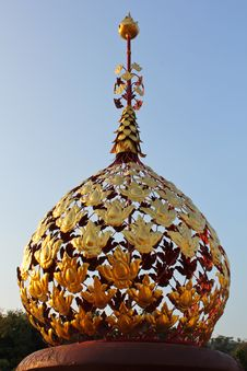 Dome Of Golden Leaves Royalty Free Stock Images