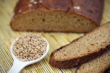 Free Homemade Wholegrain Wheat Bread Stock Images - 18177734