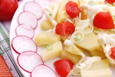 Free Potato Salad Royalty Free Stock Images - 18178219