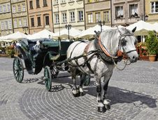 Free Horse And Buggy Royalty Free Stock Photos - 18178688