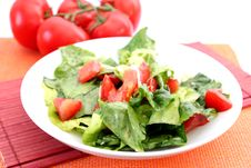 Free Fresh Salad With Tomatoes Stock Images - 18179224