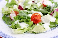 Free A Fresh Salad With Tomatoes Stock Photo - 18179510