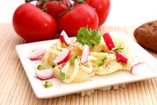 Free Potato Salad Stock Image - 18179621