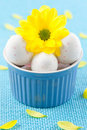 Free Easter Eggs In Bowl Stock Photography - 18184842