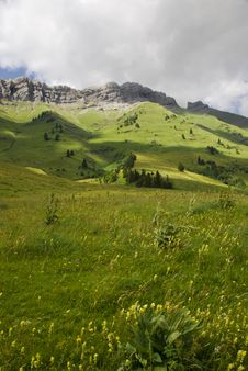 Free Sunlight On The Meadows Royalty Free Stock Image - 18181916
