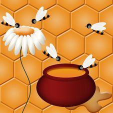 Free Honey And Bees Royalty Free Stock Photos - 18182478