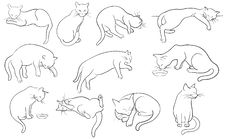 Set Of Line Cats Silhouette Royalty Free Stock Images