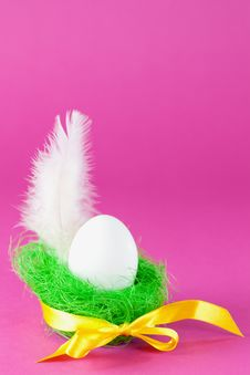 Egg And Feather Royalty Free Stock Images