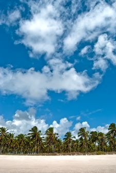 Free Tropical Horizon Stock Images - 18184984