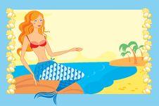 Free The Mermaid Royalty Free Stock Photo - 18186435