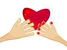 Free Heart In Hands Royalty Free Stock Image - 18188886