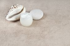 Free Cream Shell And Stone On Towel Stock Photo - 18189150