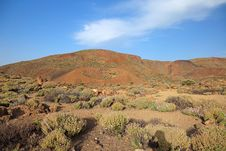 Free Volcanic Landscape, El Teide. Royalty Free Stock Photos - 18191068