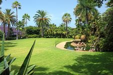 Free Beautiful Park With Flamingo. Royalty Free Stock Image - 18191106