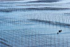 Xiapu Beach Of Fujian, China. Stock Photography
