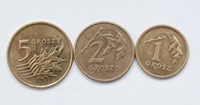 Free Coins Of Polish Currency Zloty Stock Photos - 18194393