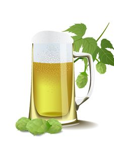 Beer And Hops. Royalty Free Stock Photo