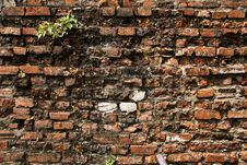 Free Background Of The Stones Stock Photos - 18196453