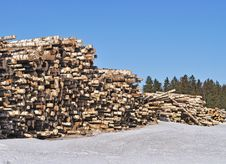 Free Pile Of Birch Logs Stock Images - 18197104