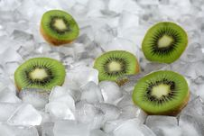 Free Kiwi On Ice Royalty Free Stock Photography - 1823547