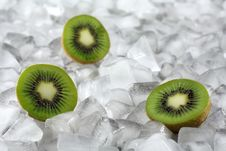 Free Kiwi On Ice Royalty Free Stock Photos - 1823558