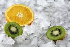 Free Orange And Kiwi On Ice Stock Images - 1823564