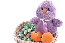 Easter Chick In Basket Royalty Free Stock Photography