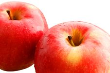 Red Apples. Stock Image