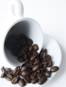 Free Coffee Grains On The Cup Royalty Free Stock Photo - 1829375