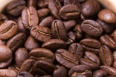 Free Coffee Beans Stock Photography - 1829752