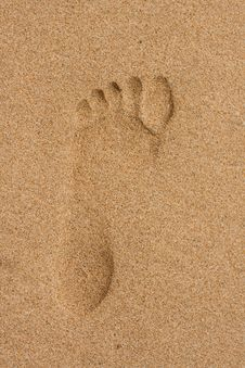 Free Footprints In The Sand Royalty Free Stock Image - 18200886