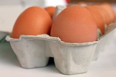 Free Eggs Royalty Free Stock Images - 18200999