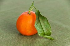 Free Single Ripe Orange On Green Napkin Royalty Free Stock Photos - 18201788
