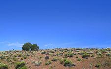 Free Desert Scene Stock Images - 18202244