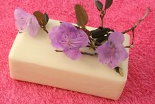 Free Flower Soap Royalty Free Stock Images - 18202809