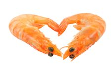 Free Shrimp Stock Images - 18202914