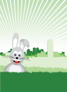 Free Easter Bunny Stock Photography - 18204052