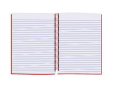Free Paper Notebook Royalty Free Stock Photography - 18204387