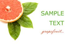 Free Fresh Juicy Grapefruits With Green Leafs Stock Photo - 18205370