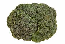 Broccoli Flower Closeup. Stock Image