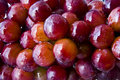 Free Grapes With Water Droplets Stock Images - 18210224