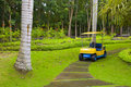 Free Golf Cart On Path, Pretty Green Grass Stock Photography - 18211642