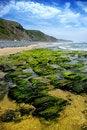Free Wild Beach Stock Images - 18215504