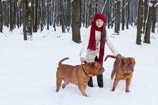 Free A Woman Is Walking In The Park With Her Dogs Royalty Free Stock Images - 18215419