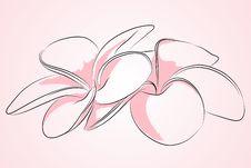 Free Beautiful Flower Royalty Free Stock Photo - 18217135