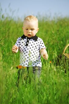 Free Boy In Grass Royalty Free Stock Images - 18219839