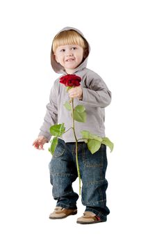 Free Little Beautiful Boy With Red Rose Royalty Free Stock Photo - 18219845