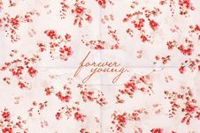 Beauty Postcard With Flowers Pattern Stock Images