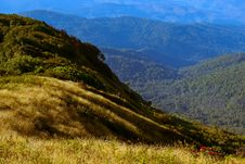 Free Inthanon Mountain, Landscape Asia Royalty Free Stock Images - 18222799